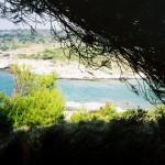 Otok Jaz4 (Medium)