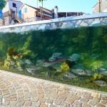 Rogoznica Akvarij 3